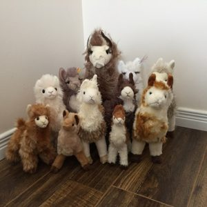 alpaca stuffies